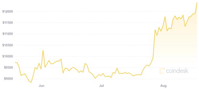 Al parecer Kim Dotcom predijo el actual rally de Bitcoin. Fuente: Coindesk