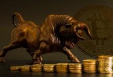Bitcoin Bull es una realidad, ¿es demasiado tarde para unirse al juego?