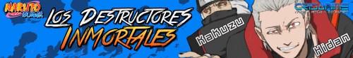 Naruto Shippuden Los Destructores Inmortales Banner