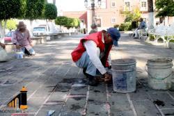 Mantenimiento a Jardín Morelos