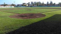Renovación de pasto en el campo de baseball