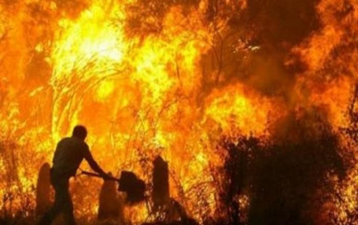 Ηλεία: Ανεξέλεγκτη η φωτιά, εκκενώθηκε χωριό, μέτρα στους αρχαιολογικούς χώρους