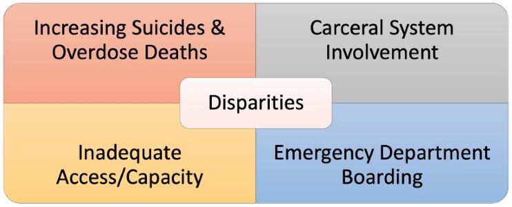 Disparities Graphic