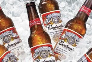 Budweiser, пиво