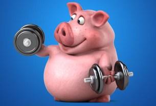 свинина,мясо,фитнес