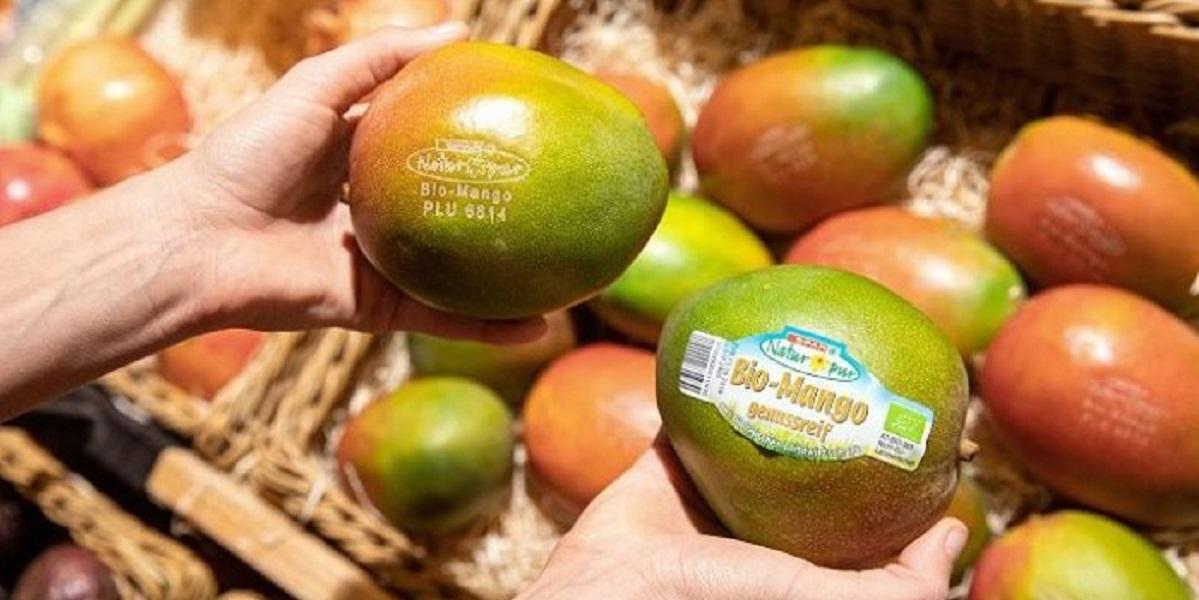 этикетка, манго
