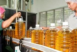 пальма,масло,Малайзия,трансжиры,ЕС