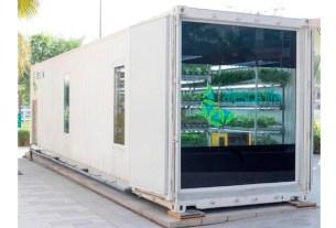 Alesca Life Technologies,контейнер,Дубаи