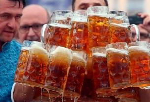 пиво,Чехия,контроль качества