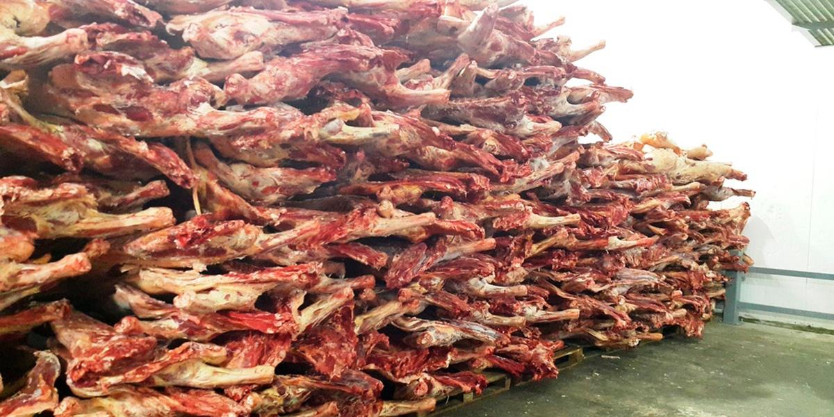 Тольяти,гнилое мясо