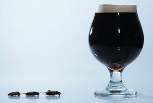 Cricket Dark Ale,пиво,Япония,сверчки