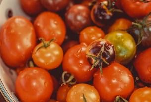 томаты, замочить в воде, рекомендации, МЧС