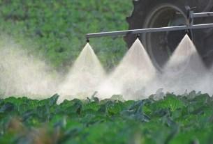 пестициды,Еврокомиссия,органика