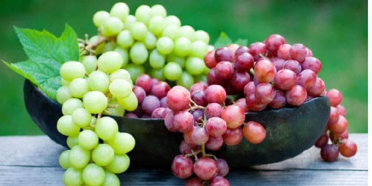 Виноград, гроздь