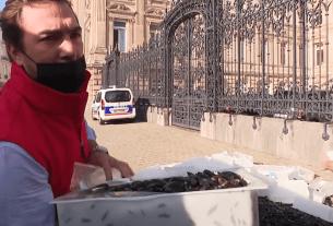 Мидии, протест, ресторатор, Франция, La Chicorée, Aux Moules, Арно Менье