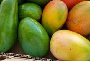 тропические фрукты, манго и авокадо,ЗОЖ, Ягодный союз