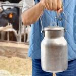Алтай, молоко, цена, сговор, ФАС, нарушение, закон