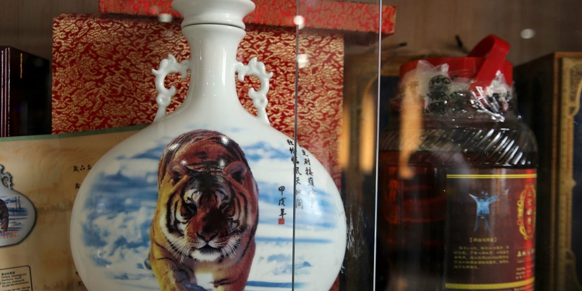 Китай, амурские тигры, вино из костей тигра, мясо тигра