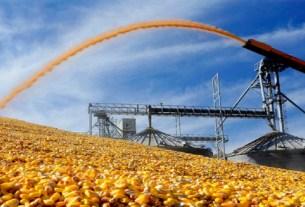 госпошлина, экспорт сои, цены на корма, 2021 год