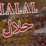 фальсификат халяль, нехаляль, Малайзия, неговядина