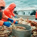 Рыболовные суда, Китай, экспорт, рыба, профилактика COVID-19, жесткие меры