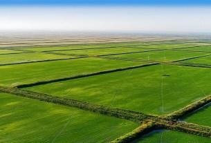 Краснодарский край, посевы риса, запас воды, не хватает воды
