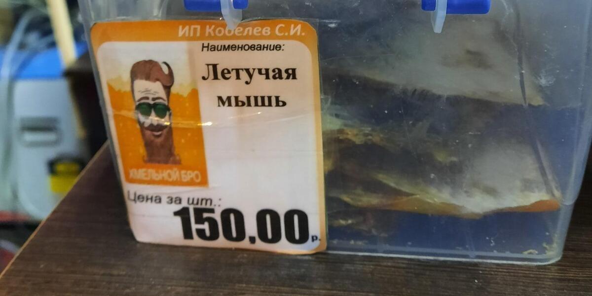 «Хмельной бро», Ростове-на-Дону, снеки, филе летучих мышей