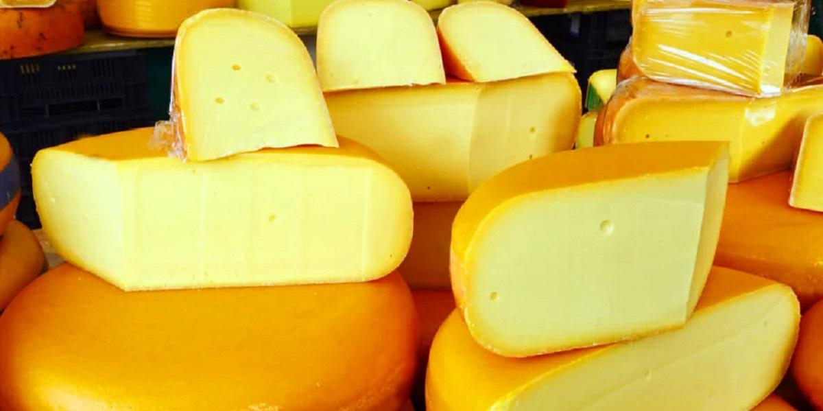 «Сыр Голландский», растительные жиры, фальсификация,Башкирия,