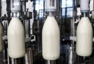 «Галактика», Игорь Дю, контроль качества, органическое молоко