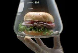 Бургер из микроводорослей, Sophie's Bionutrients, Сингапур, новая разработка, веганство, белок