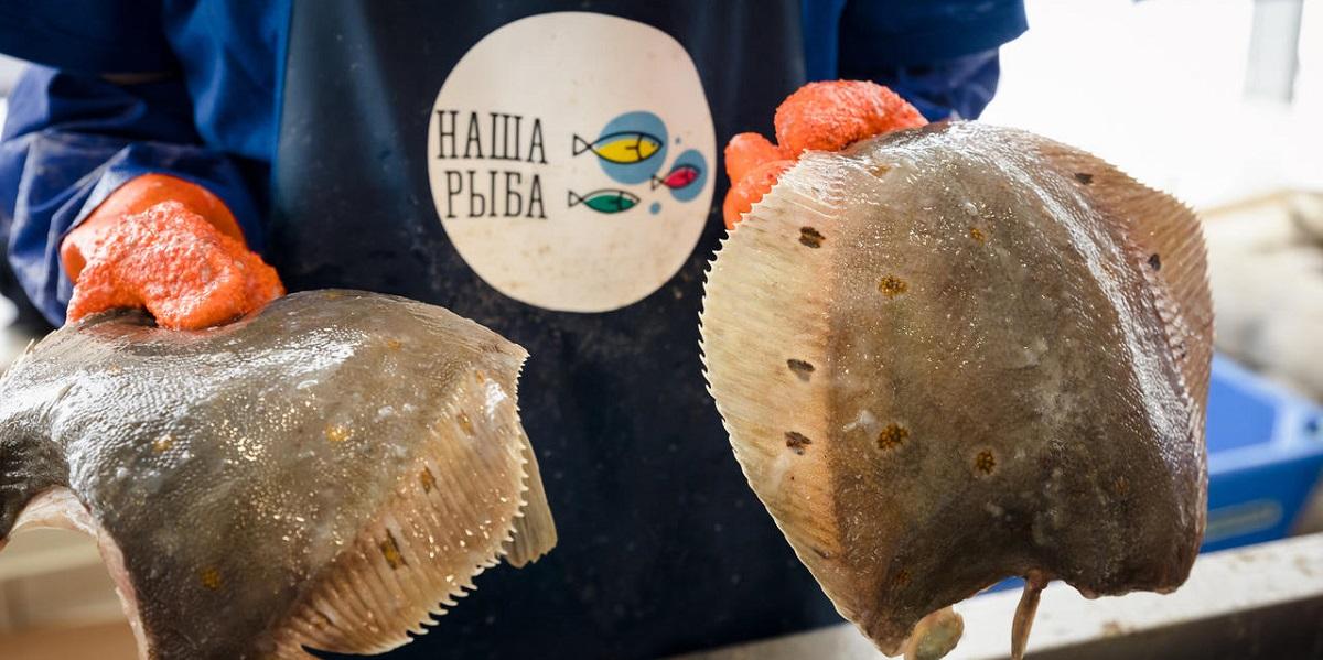 Ярмарка «Наша рыба», Мурманск, рыба, фудтраки