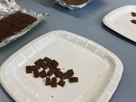 клеточный шоколад, лабораторный шоколад, швейцарский шоколад, шоколадный грибок