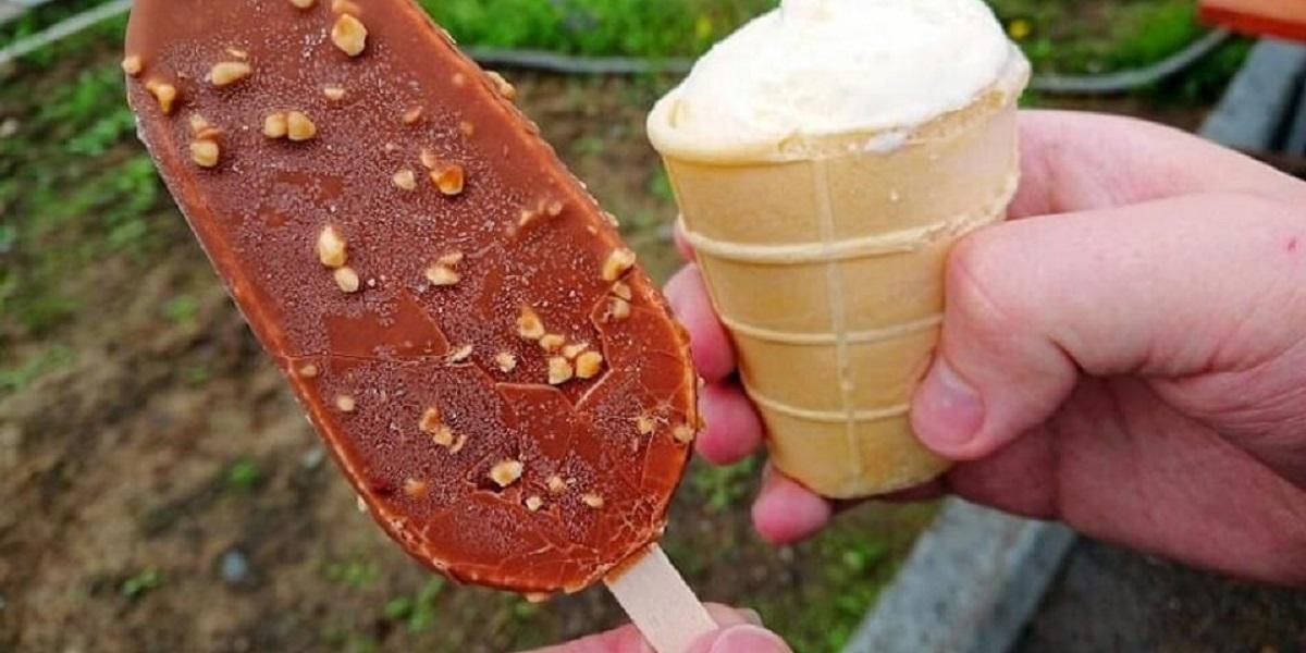 Алмалык, отравление мороженым, частное мороженое