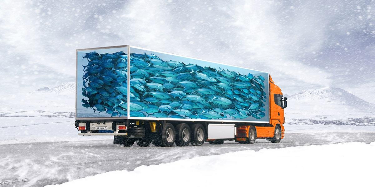 Росрыболовство, логистика, перевозка рыбы, отечественные рефконтейнеры, «Уралвагонзавод»