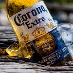 Corona, Google, Maxima Kitchen Equipment, пиво, рейтинг