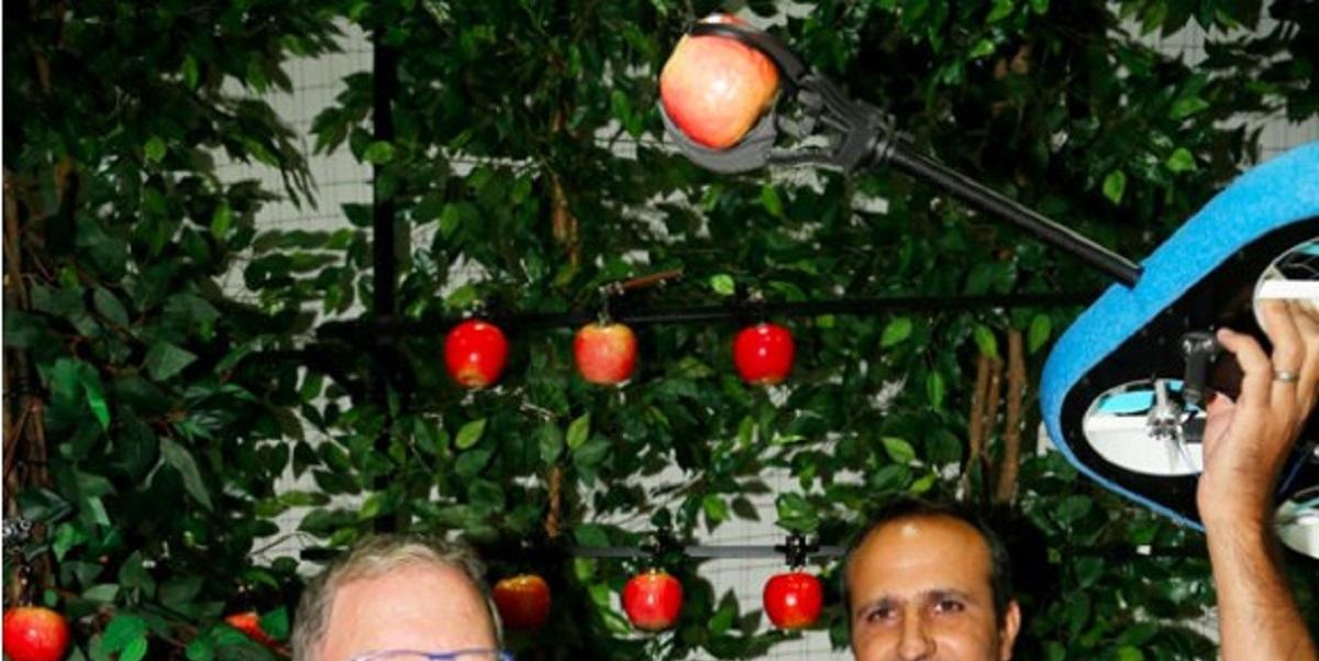 Tevel Aerobotics Technologies, сбор урожая, дроны, фрукты