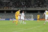 U Cluj - FC Vaslui_2013_05_04_087