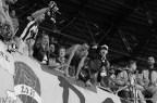 U Cluj - FC Botosani_2014_04_14_173