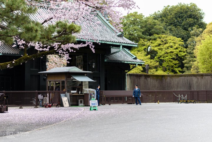 Entrance to Imperial Palace Tokyo