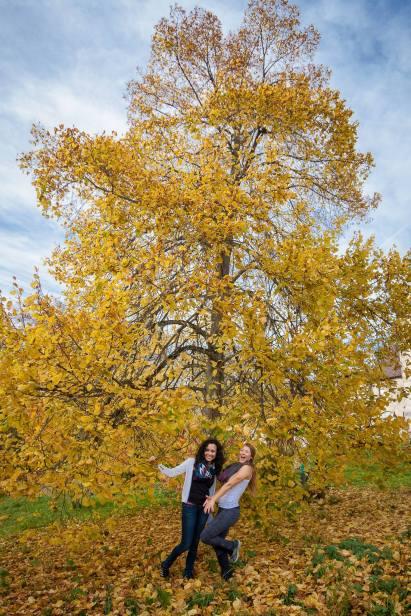 As cores do outono europeu. (Foto Jeremy Fairbrass)
