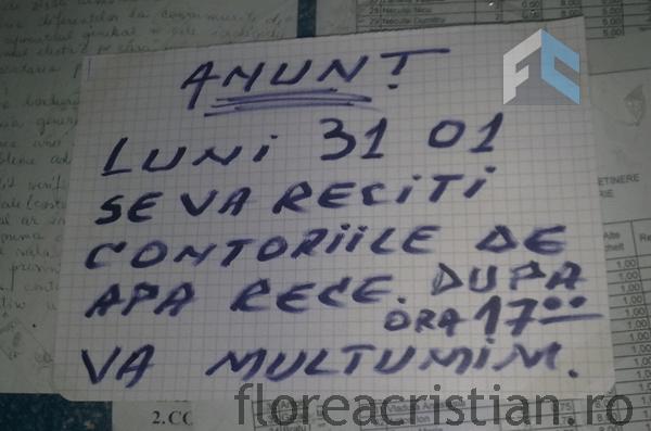administrator-analfabet