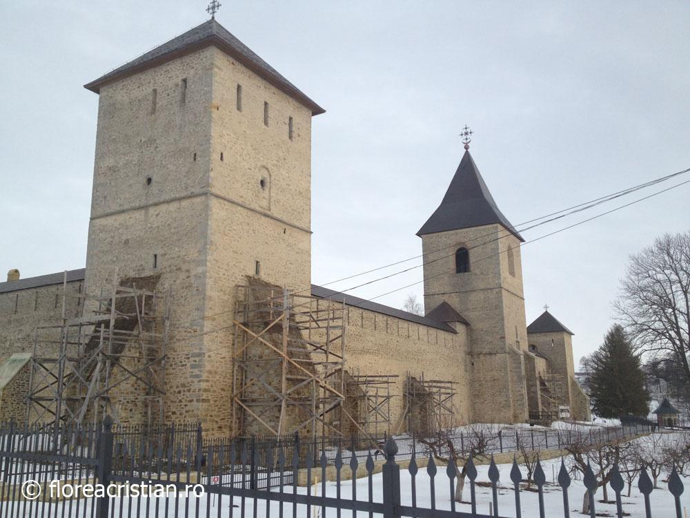 Manastirea Dragomirna 1