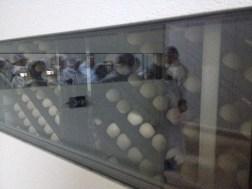 8 incubator oua