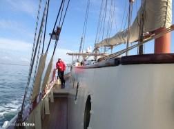 aventura pe o nava cu panze - constanta varna 34