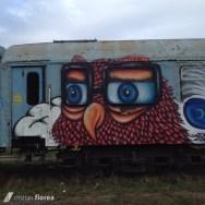 trenul cu graffiti din Cluj 6