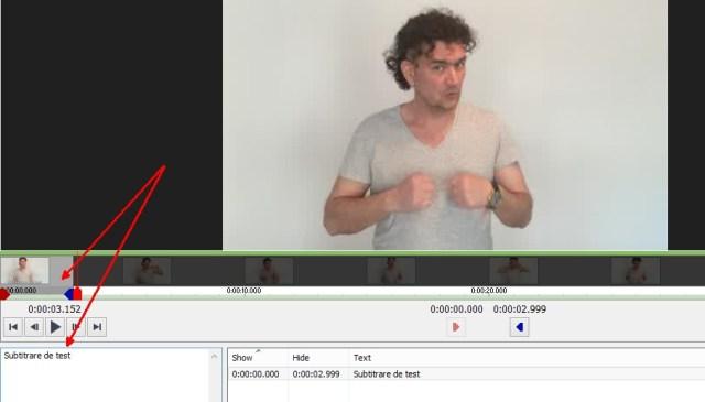 cum adaugi subtitrare unui clip - videopad