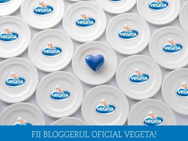 fii-blogger-oficial-vegeta-600x450