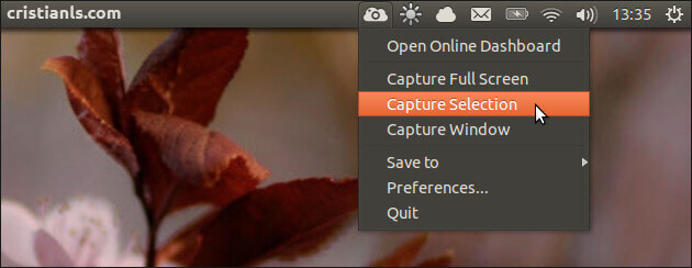 ScreenCloud in Ubuntu 13.04