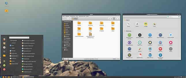 particularizare-linux-mint