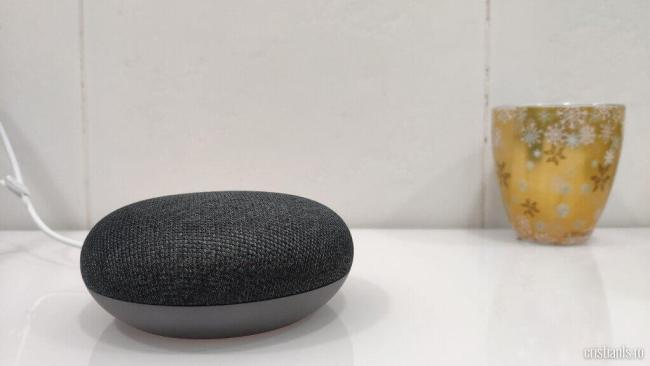 google home/nest mini